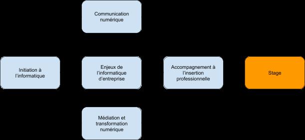 schema formation